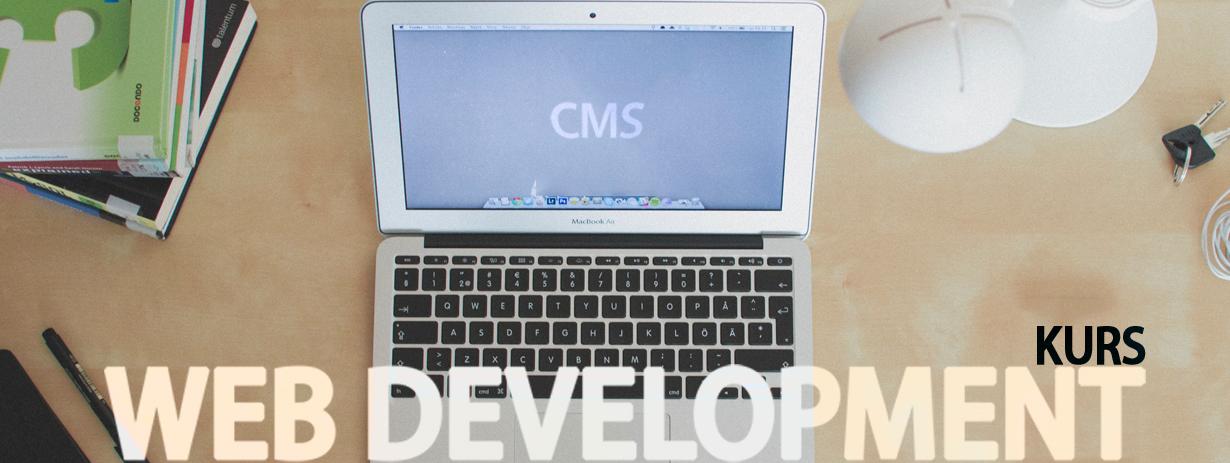 web-development-1230x450